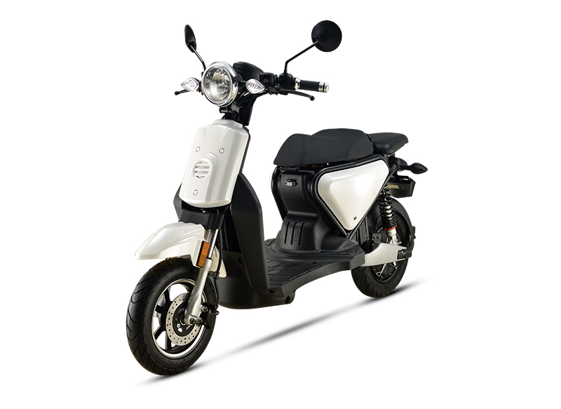 BEAUTIFUL AND FASHIONABLE ADULT WOMEN E-BIKE