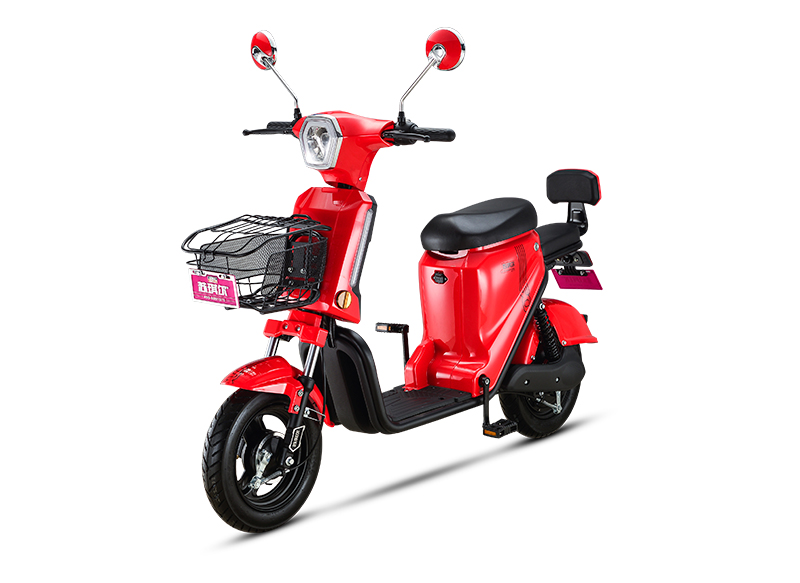 NEW PRETTY 450W BRUSHLESS MOTOR ELECTRIC BIKE